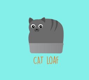 catloaf2